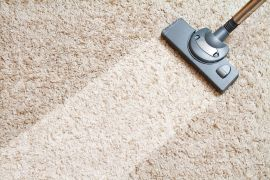 Oracle Services 20% off Pest Control - 10% off Carpet Cleaning