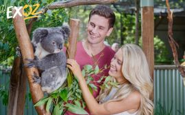 Featherdale Wildlife Park Entry - 10% Off