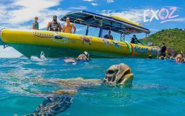 Whitehaven Beach and Rafting Adventures - 10% Off